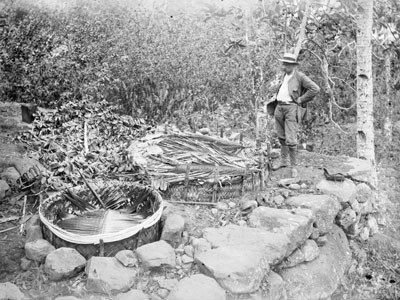 Devant deux fosses à ma à Nouka Hiva – Hjalmar Stolpe (1884)