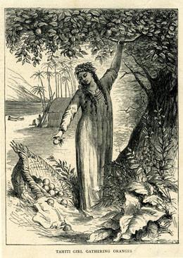 Fille de Tahiti cueillant des oranges (XIXème)