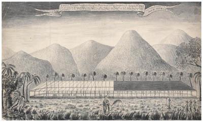 Plantation et vue depuis la maison de la reine, sur l'île du Roi George – Samuel Wallis (1767)