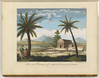 Maison et plantation d'un chef de Tahiti