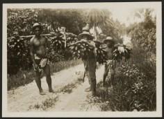 Porteurs de régimes de bananes à Tahiti (1910)