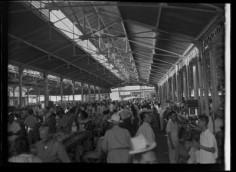 Scène de marché à Papeete (1952)