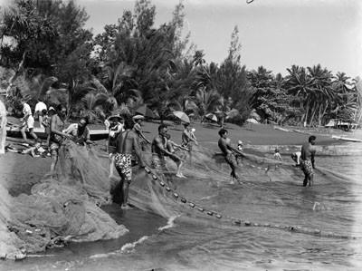 Pêche au filet sur bord de plage (1964)