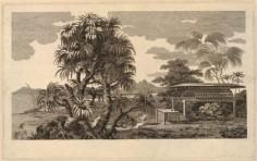 Vue de l'île de Huahine (1773)