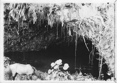 Grottes de Mara'a (1892)