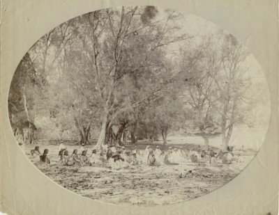 Plage de Rimatara (1889)