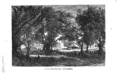 Un paysage de Tahiti (1876)