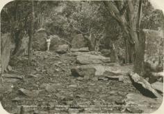 Un ancien marae sur l'île de Raivavae (1930)