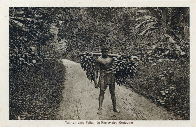 Tahitian avec feiis – Le retour de la montagne