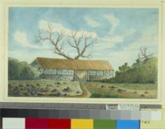 Fautumu, dernier bastion des Tahitiens face aux Français (1850)
