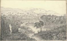 Vue de Papeete depuis la maison de Crook (1822)