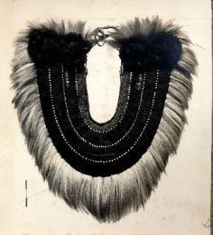Photographie d'un plastron tahitien en plumes, dents de requin et poils de chien (1950)