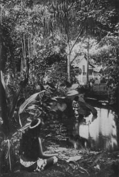 Le bassin de la reine (1919)