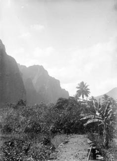 A Nuku Hiva (1884)