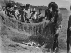 Groupe d'îliens du Pacifique examinant un filet de pêche (1964)