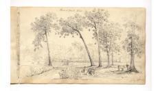 Arbres à pains (1834)