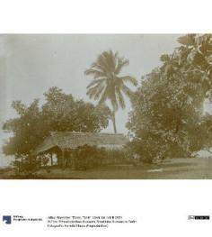 Tiarei (1896)