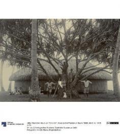 Maison de Ori a Ori (1896)