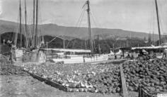 Coprah et noix de coco sur les quais de Papeete (1922)