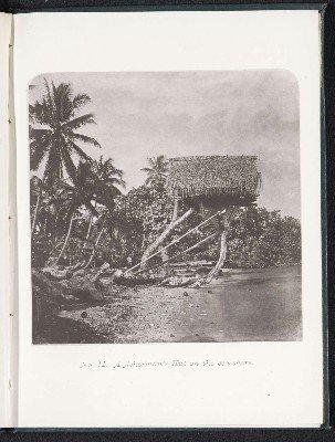 Habitation d'un pêcheur en bord de mer (1880)