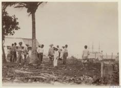 Tahitiens défrichant une terre en bord de mer (1886)