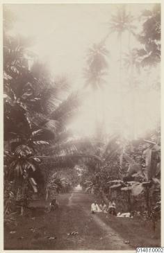 Paysage de Nuku Hiva (1886)