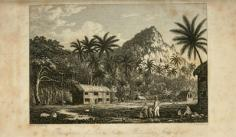 Residence of John Adams, Pitcairns island (1831)