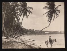 Pinchot South Seas Expedition : Cavalier en bord de lagon (1929)
