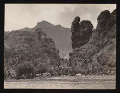 Pinchot South Seas Expedition : Fatu Hiva, baie des vierges (1929)