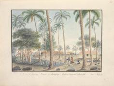 Marae de Oparrey (1792)