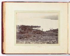 Port Phaéton (1887)