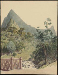 Rivière de la Fautaua (1855)