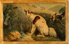 Chien de Tahiti (1788)