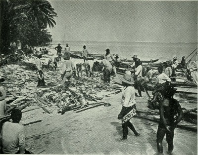Scène de pêche à Raiatea (1900)