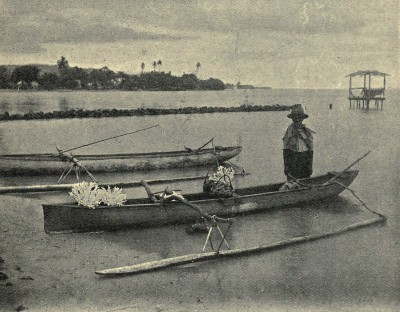 Pirogue chargée de corail blanc (1906)