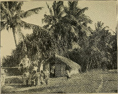 The primitive life of the island (1921)