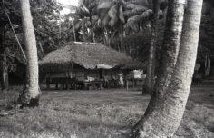 Fare à Bora Bora (1936)
