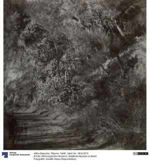 Arbres de Tahiti (1905)
