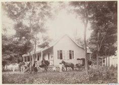 Habitation de Tahiti avec fiacre – Arthur Ekström (1886/1887)
