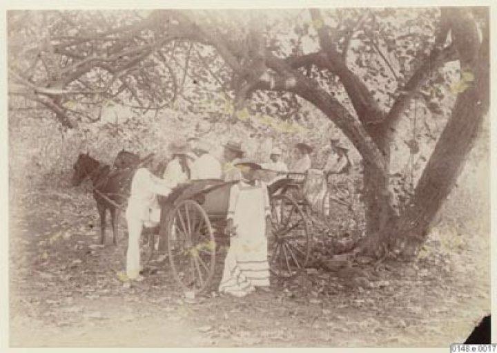 Fiacres pour promenade à Tahiti – Arthur Ekström (1886/1887)