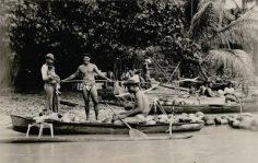 Chef Tumatea Raatau au retour d'une pirogue chargée de noix de coco (1921)