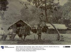 Porteurs de bananes à Tiarei – Arthur Baessler (1896-1898)