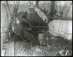 Goélette chargée d'oranges à Mangareva (1921-1923)