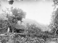 Paepae à Nouka Hiva – Hjalmar Stolpe (1884)