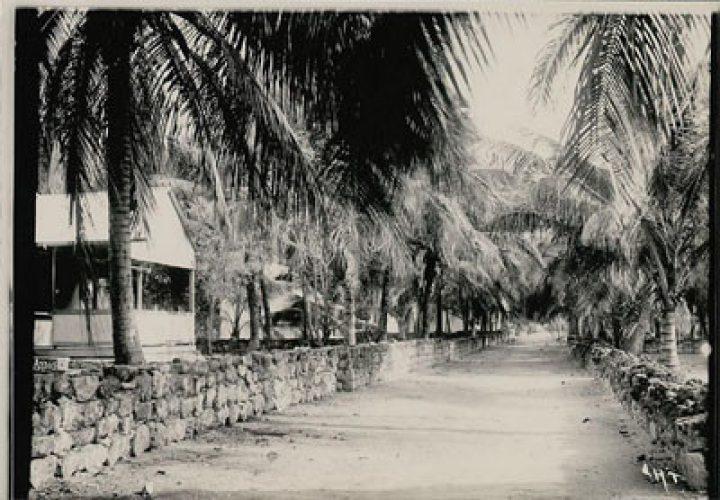 Rue d'un village paumotu bordée de murs de pierres – Photo N°A2205 – Charles Askins Townsend (1899-1900)