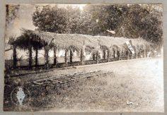 Fête du folklore – Fare niau et drapeau SEO (1926)