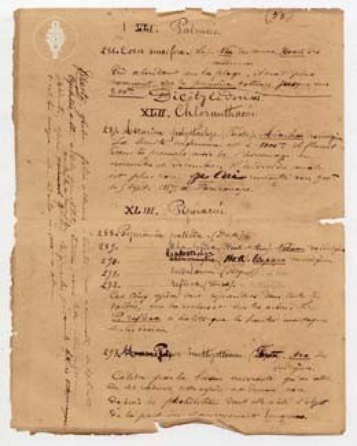 Document manuscrit traitant de botanique de Jean Nadeaud (1864)
