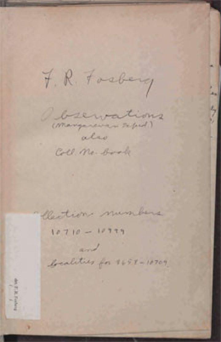 Observations lors d'une expédition à Mangareva (1934)