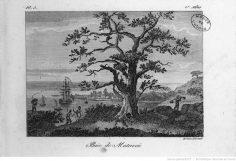 Bibliothèque portative des voyages de Cook (1817)