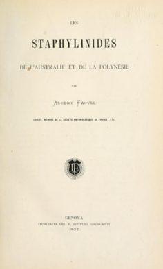 Les staphylinides de l'Australie et de la Polynésie (1877)